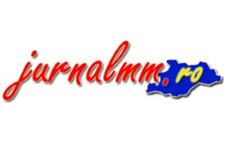 Jurnal MM